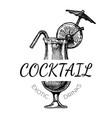 exotic cocktail drinks vintage label vector image vector image