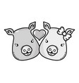 grayscale cute pig couple animal lover vector image