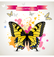 swallowtail butterfly vector image vector image