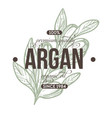 argan plant isolated icon with lettering herbs vector image vector image