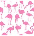 flamingos pink seamless vector image vector image
