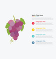 grapes fruit infographics with some point title vector image