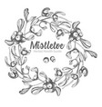 hand drawn botanical sketch wreath mistletoe vector image vector image