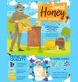 honey harvest beekeeper checking beehive vector image vector image