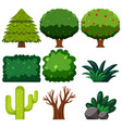 set of green plant vector image vector image