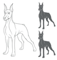 set with doberman vector image