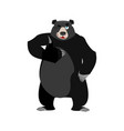 baribal winks emoji american black bear thumbs up vector image