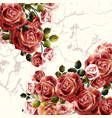 beautiful background or invitation with rose vector image vector image