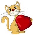 cat with love heart vector image vector image