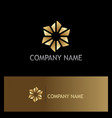 circle triangle gold logo vector image vector image