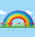 colorful rainbow in garden vector image