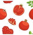 fresh pomegranates hand drawn background doodle vector image