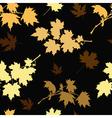 golden maple vector image