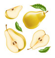 realistic yellow ripe pear healthy food set vector image vector image