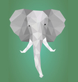 Low polygonal elephant head vector image