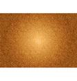 texture grain orange vector image