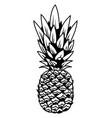 pineapple big tasty summer tropical fruit vector image