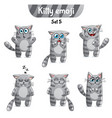 set of tabby cat characters set 5 vector image