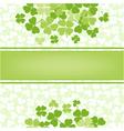 flower background with clover shamrocks vector image vector image