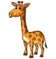 giraffe with happy face on white background vector image vector image