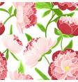 peony rose flowers seamless pattern red pink green vector image vector image