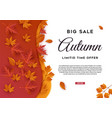 autumn big sale leaves background vector image vector image