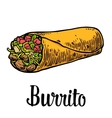Burrito - mexican traditional food color vector image vector image