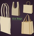 Eco Bags vector image