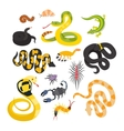 flat snakes and other danger animals vector image vector image