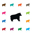 isolated bear icon polar element can be vector image vector image