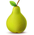 Juicy pear isolated on white vector image