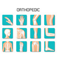 orthopedic and spine icon set on white background vector image vector image