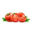 realistic fresh red ripe tomato set vector image vector image