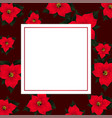 Red poinsettia on red banner card2