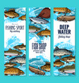 sea fish banners for seafood or fishing design vector image vector image