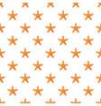 starfish pattern vector image vector image