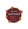 big sale autumn benner with leaf background vector image