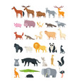 cute cartoon animals forest savannah and farm vector image vector image