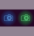 neon icon of blue and green photo camera vector image