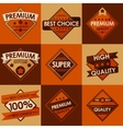 Set of retro vintage badges and labels Flat Style vector image vector image