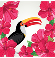 Toucan with beautiful flowers vector image
