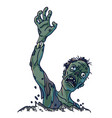 zombie that climbs out of ground isolated vector image vector image