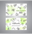 bugs insects hand drawn cards pest control vector image