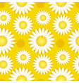 concept simple of daisy on blue sky vector image