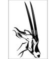 Gemsbok antelope vector image vector image