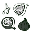 Hand drawn figs set Eco food vector image vector image