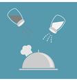 Silver platter cloche chef hat Salt pepper shaker vector image vector image