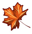 autumn maple leaf isolated on a white background vector image vector image