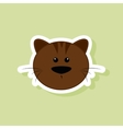 cute cat face vector image vector image