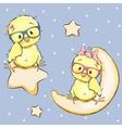 Lovers Chicken vector image vector image